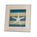 cuadro-deco-estrella-de-mar